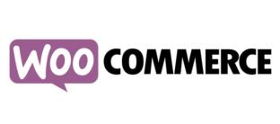 WooCommerce, wordpress, plataforma ecommerce, programa tienda online, como hacer tienda online, tiendas online, CMS, plataforma tiendas online, comercio electrónico España
