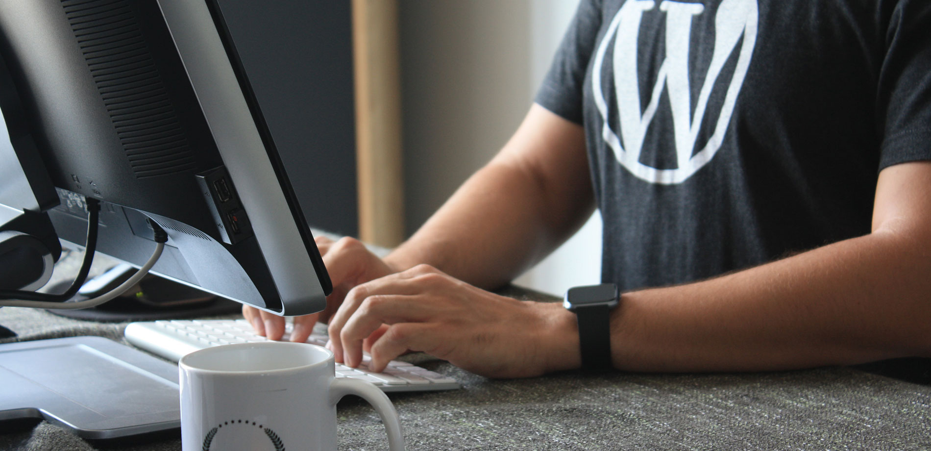 WordPress, Desarrollo Web, CMS
